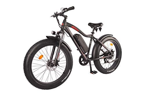 DJ Fat Bike 750W