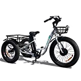 Emojo Electric Fat Tire Tricycle
