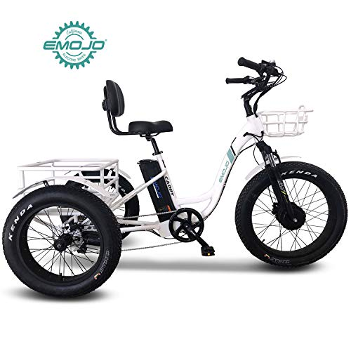 Tricycle with Dual Rear Wheel Power