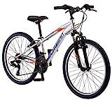 Schwinn High Timber Youth/Adult Mountain Bike, Steel Frame, 24-Inch Wheels, 21-Speed, Silver