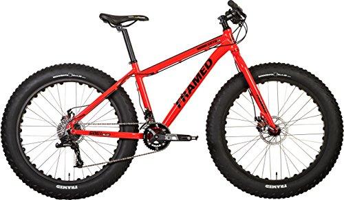 minnesota fat bike reviews