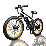 ECOTRIC 4.0 inch Fat Tire 26