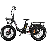 20 Inch Fat Tire Electric Trike