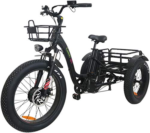 Rubicon Electric Tricycle