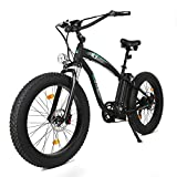 ECOTRIC Fat Tire Electric Bike 1000W