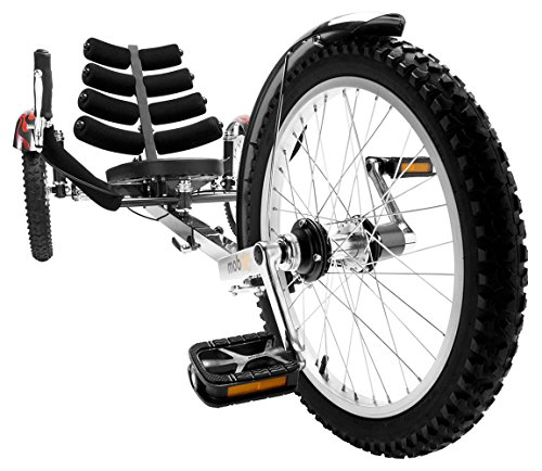 Worlds 1st Reversible Adult Tricycle Bike