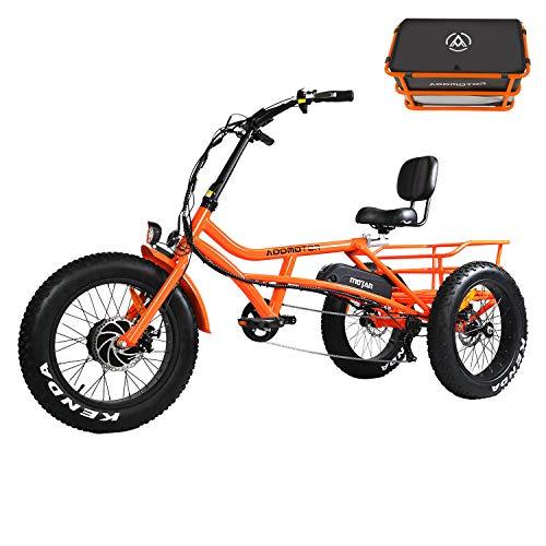24 Inch Fat Tire Electric Trike 3 Wheel Ebikes 750W Electric Bike