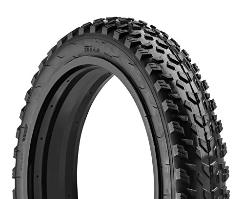 "Best 20"" Fat Bike Tires"