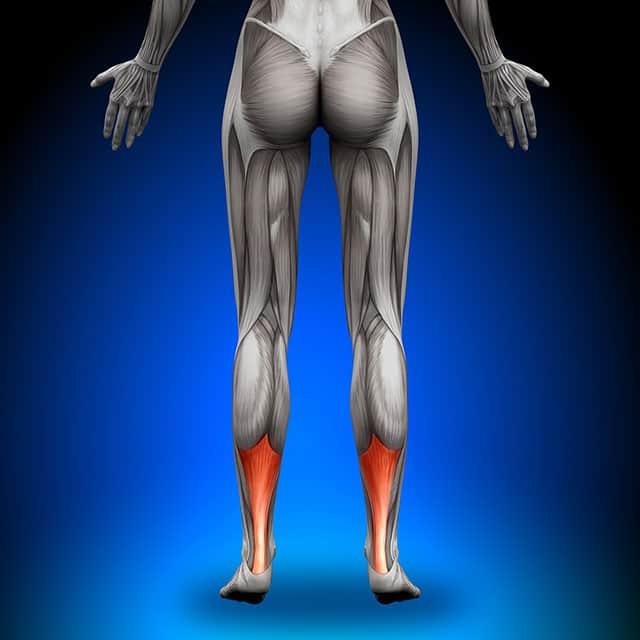 Achilles Tendons pain