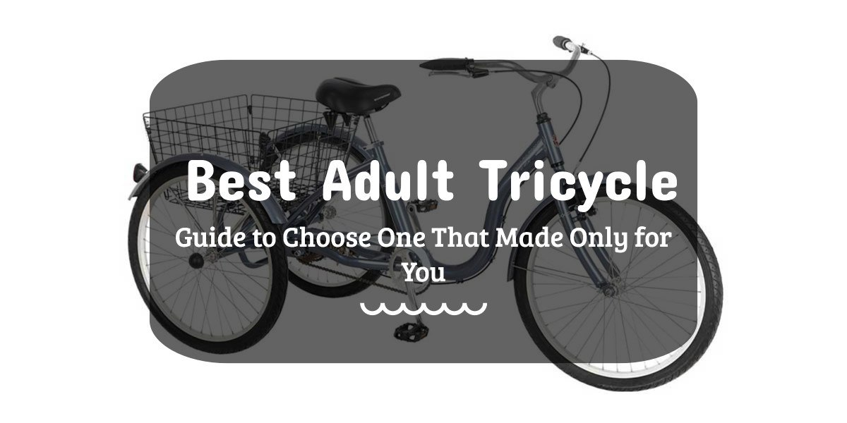 BEST ADULT TRICYCLE | An Incredible Ways To Get On A Tight