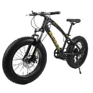 fat bike brakes