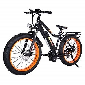 Best Fat Tire Electric Bike ​Uses