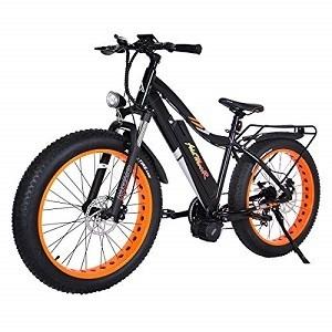 Best Fat Tire Electric Bike Uses