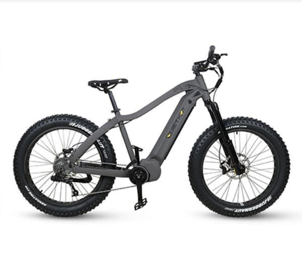 quietkat apex fat bike